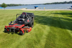 Lawnmowing and Maintenance Services