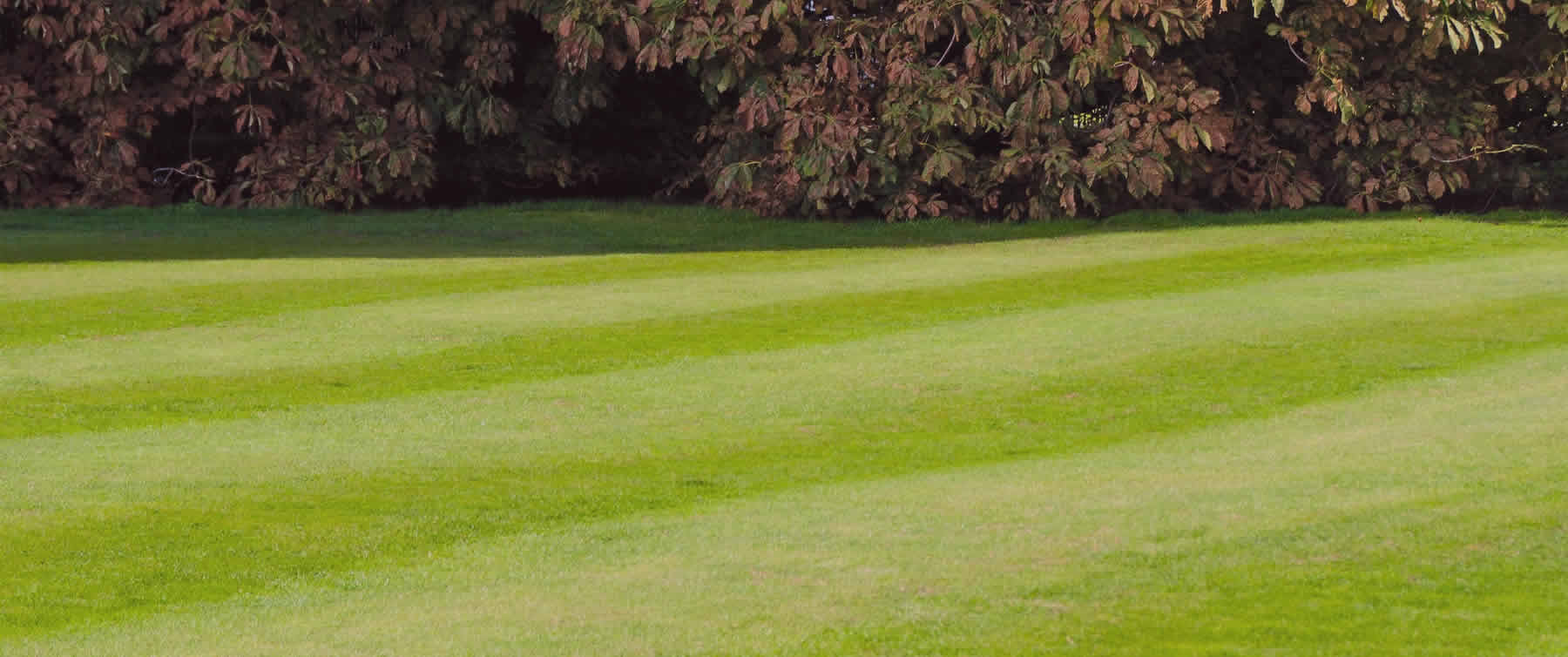 Lawn mowing services in Detroit Lakes, Minnesota.